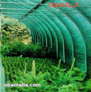 casa sombra verde protegiendo cultivos