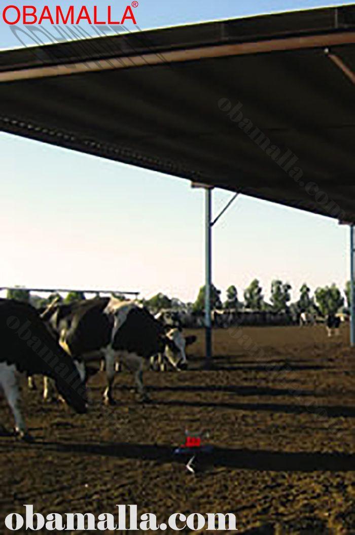 red de sombreado instalada para la protección de ganado.