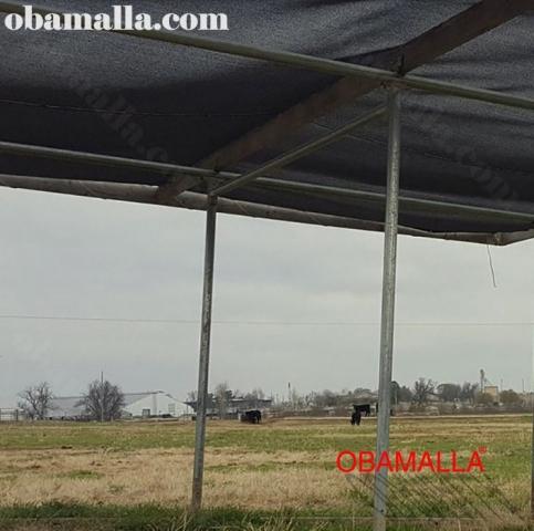 malla sombra obamalla instalada sombre campo.